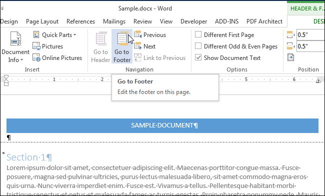 what to put in the footer of a document