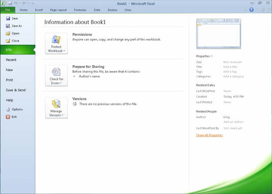 access cant see opened excel document