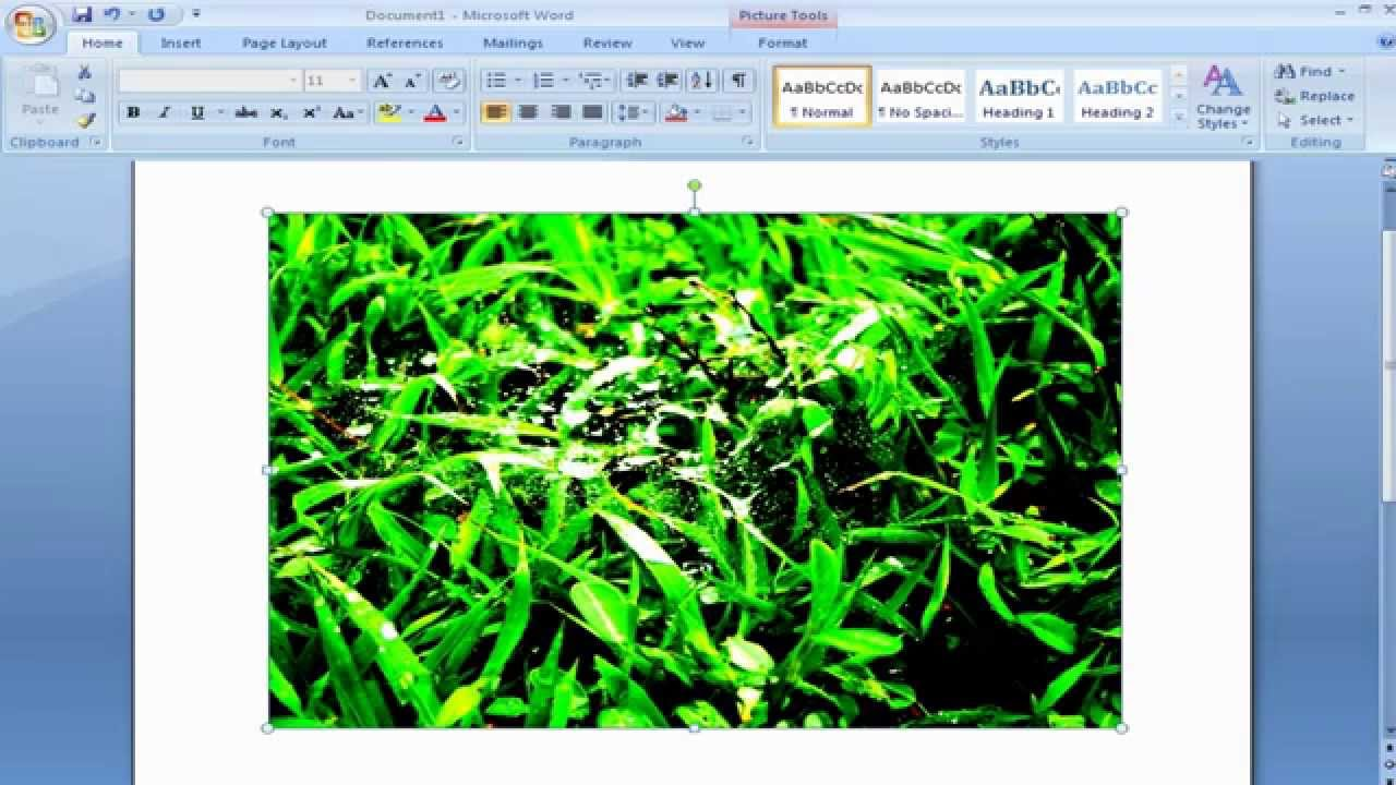 how to change brightness of word document