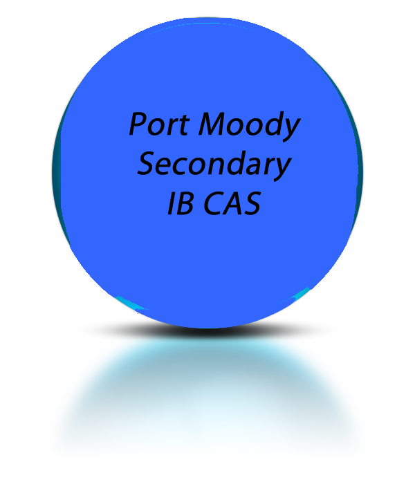 ib cas learning outcome document