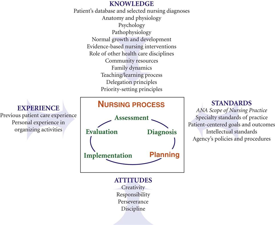 nursing care planning and documentation